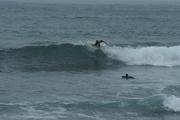 Family & Surf 166