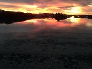 Boat Bay sunset
