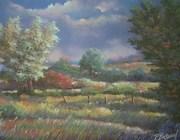 paysage en Limousin