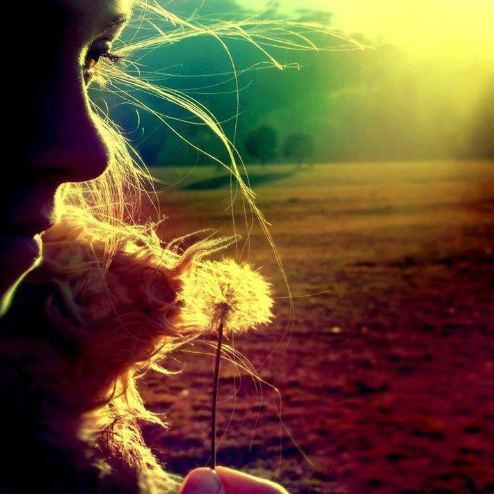 """""""L'amour surgira dans votre coeur, quand vous aurez abattu les barrières entre vous et l'autre, quand vous rencontrez et observez les gens sans les juger..."""""""