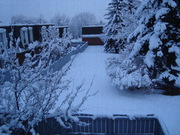 Out my bedroom window