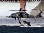 Shark Attacks Helicopter