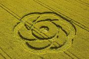 goldenballhill2005