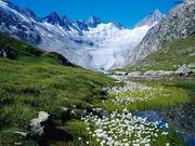 nature beautiful - glaiser