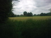 Near Binton