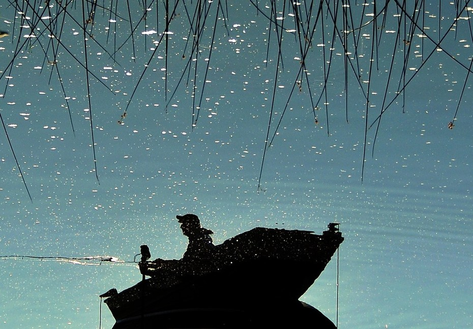 Fishing through a meteor shower