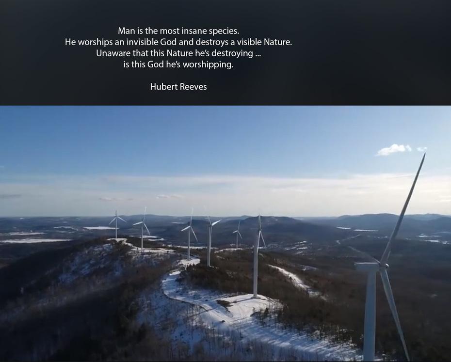 Hubert Reeves Quote