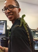 Chinese Water Dragon with Des