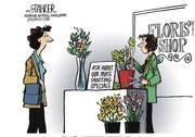 LDN editorial cartoon posted Nov. 2017