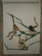 monkey study 2