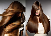 http://www.wellness4healthy.com/voluminesse-hair-regrowth/