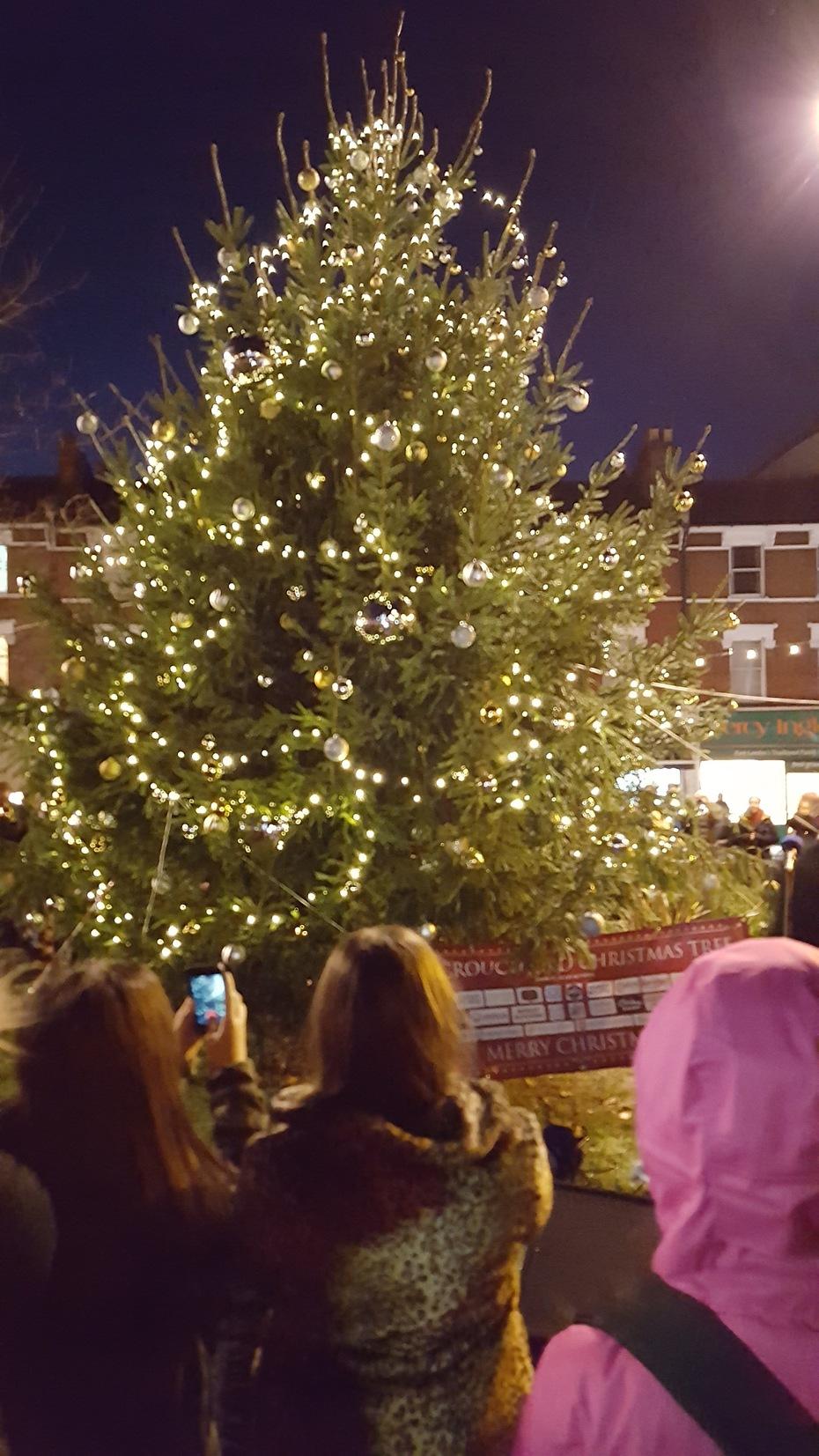 Christmas Tree- lights but no celebrity