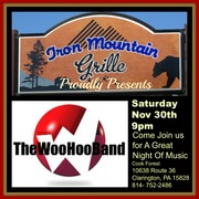 The Woo Hoo Band Flyer
