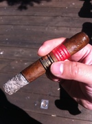 Partagas Serie D Especial Limited Edition 2010