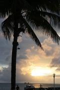 Misc Aruba 035