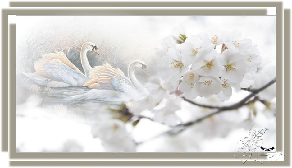 1342009530?profile=RESIZE_1200x