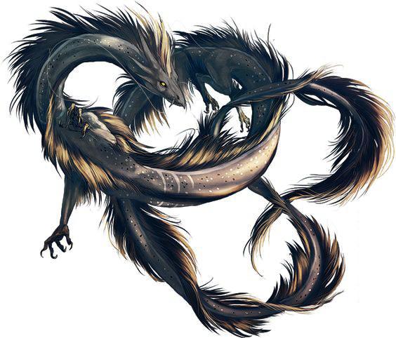 135895539?profile=RESIZE_710x