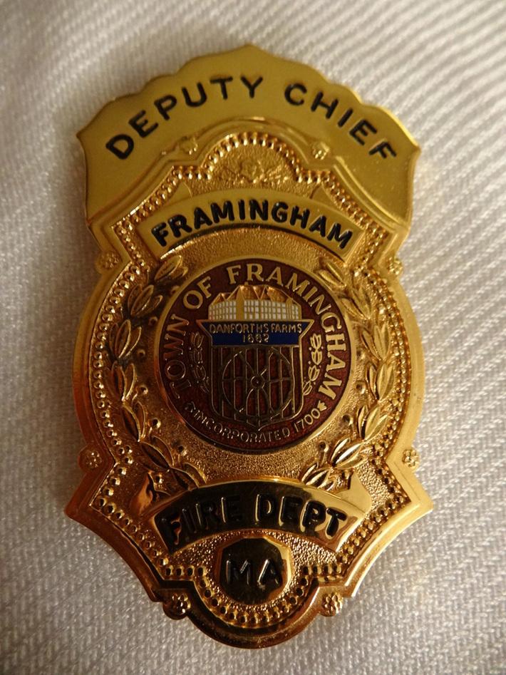 Deputy Badge