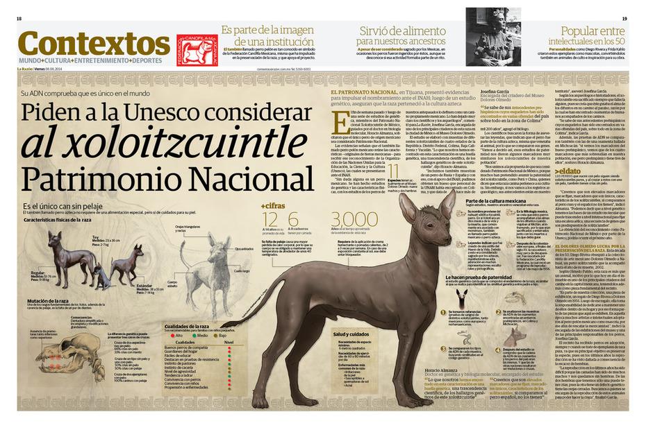 Piden a la Unesco considerar al Xoloizcuintle Patrimonio Nacional
