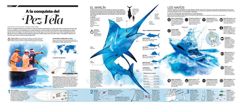 A la conquista del pez vela