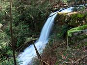 Left Prong Falls