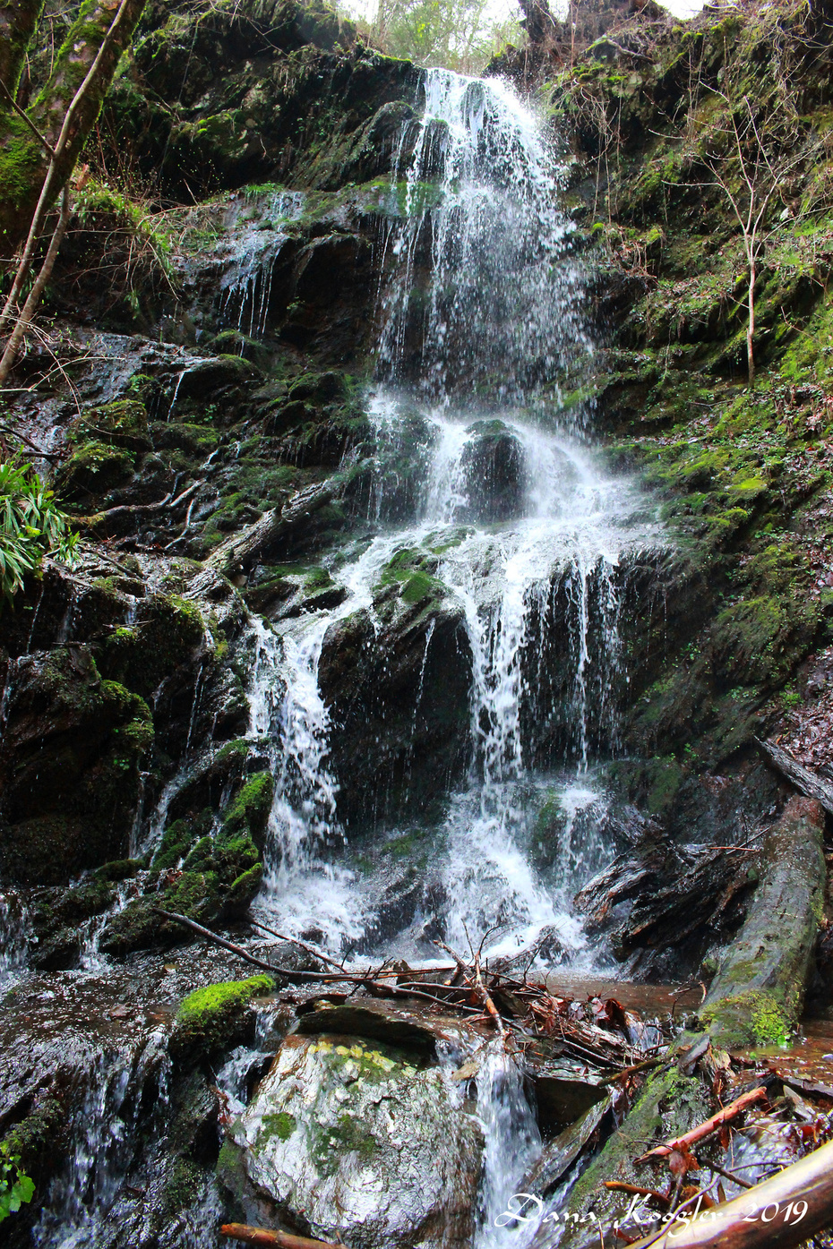 Spring Br Falls