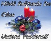 new year karjala