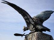 Turul Madár - Turul Bird