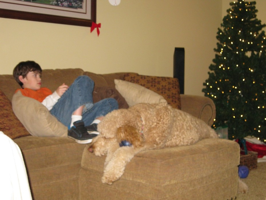 Gizmo on Footstool with Cole