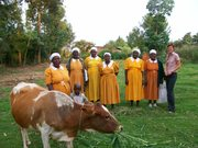 RSWR Project in Kenya