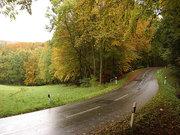 Autumn2-060