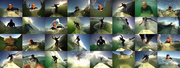 "GoPro entry by Garyth Bevan - ""All the seasons of surfing."""