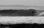 J-Bay black and white
