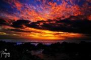 Majestic Gansbay