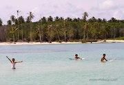 Surfing at Fishfingers, Macaronis