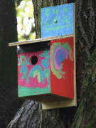 Nestboxes in the park