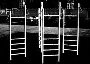 ladders bw