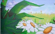 Daisies by Richard Minchin