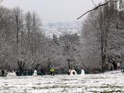 Snow in St Andrew's Park (5 Feb 2009)