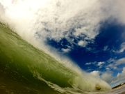 Whatta Wave