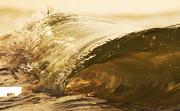 liquid gold (2)