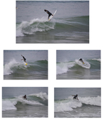 Sequence at New Pier