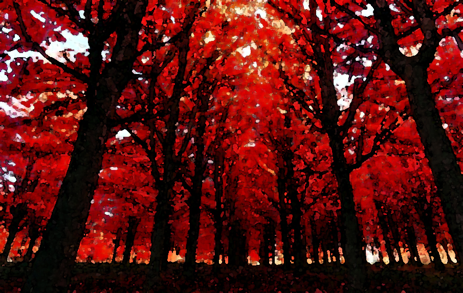 Deep Crimson Forest