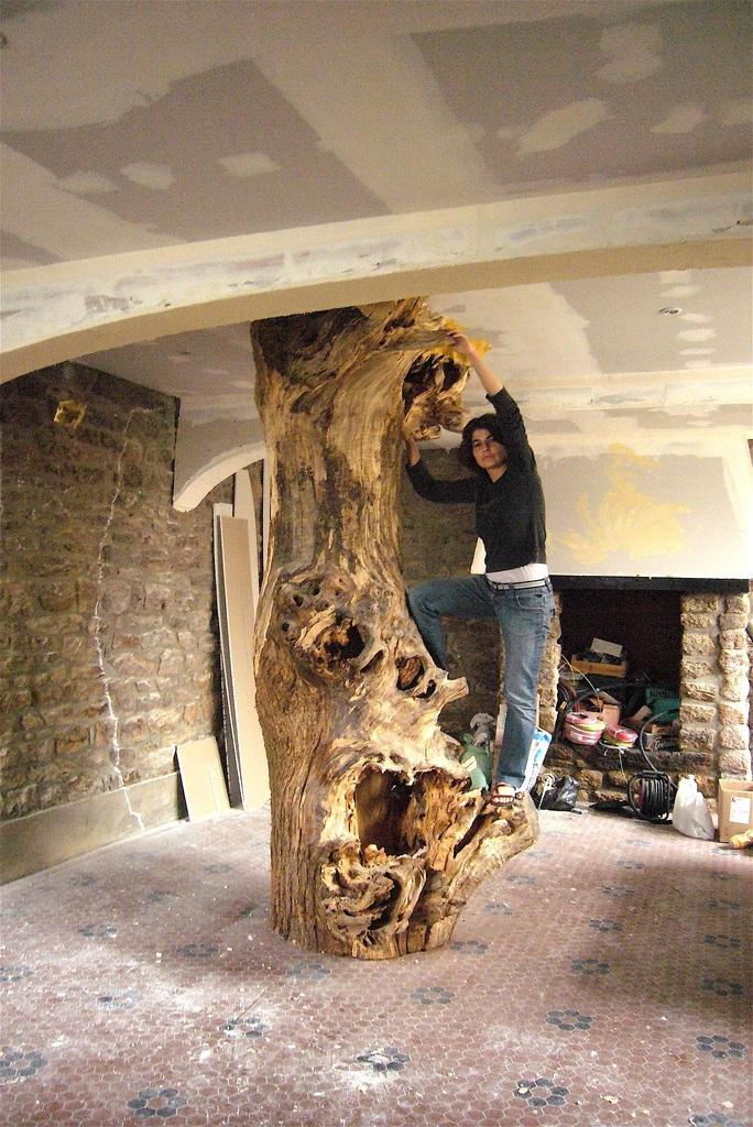 P1200138 Clarine dans l'arbre chantier ©ClaudeR
