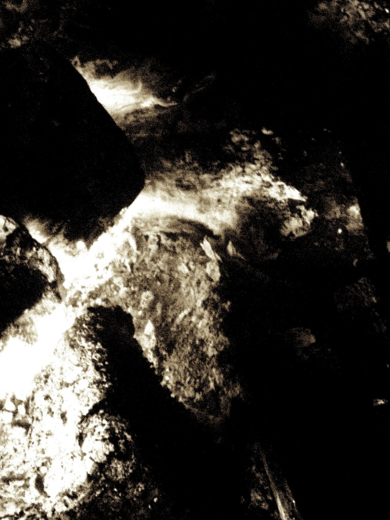 P1080637 merlin©ClarineFaure