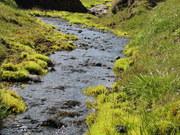 East Icelandic river