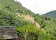 suang pi Khuapi nuai