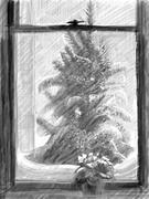primrose and christmas tree