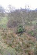 Helmdon track bed  - towards Banbury