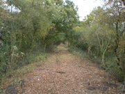 Trackbed near Easton Neston Ironstone Workings